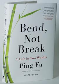 Bend Not Break book photo